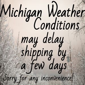 Michigan Weather Conditions May Delay Shipping
